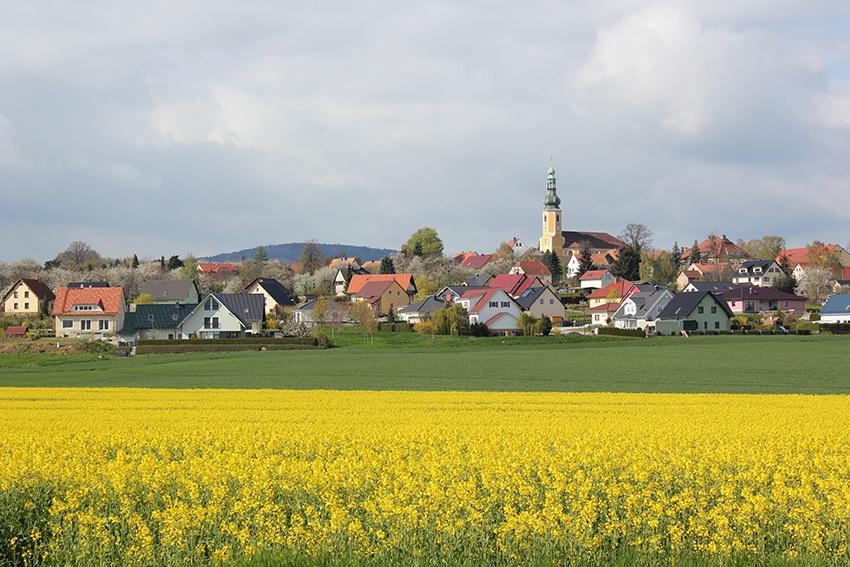 Hochkirch_Dorfansicht_Rapsfeld