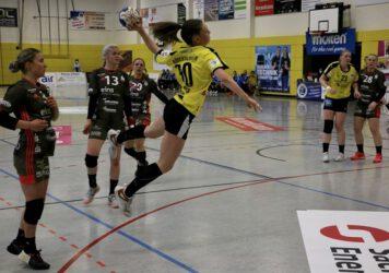 Handball-Emilia-Ronge-356x250.jpg